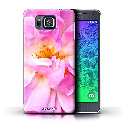 Kobalt® Imprimé Etui / Coque pour Samsung Galaxy Alpha / Begonia conception / Série floral Fleurs Portulaca