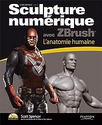 Sculpture numerique avec Zbrush