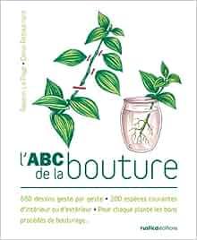 LA BOUTURE ABC DE TÉLÉCHARGER