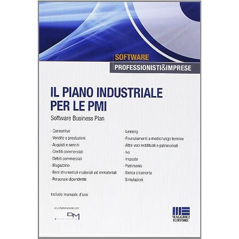 Il piano industriale per le PMI. Software.