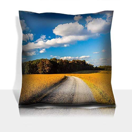 MSGDF Throw Pillowcase Cotton Satin Comfortable Decorative Soft Pillow Covers Protector Sofa 18x18 1 Pack Dirt Road Through Farm Fields in Rural York County Pennsylvan -