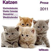 Katzen Prosa 2011: Wochenkalender (Boxed Cal)