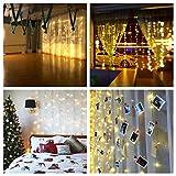LED Lichtervorhang Warmweiß für Innen Außen Fenster Weihanchten Geburtstag Party Hochzeit IP44 31V Niederspannung 8 Lichtmodi 300er LEDs Lichterkette 3M x 3M Weihnachtsbeleuchtung Vergleich