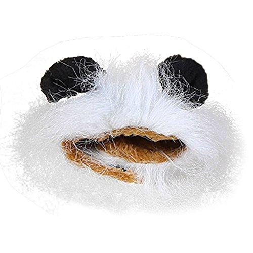 Beetest Haustier Kostüm Löwe Cosplay Ohren für Hunde Katze Halloween Karneval mit (Costume D'halloween Fotos)