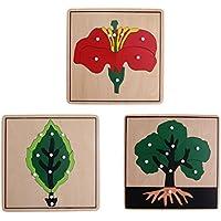 3 Piezas Montessori Rompecabezas Botánica (Árbol, Hoja y Flor)