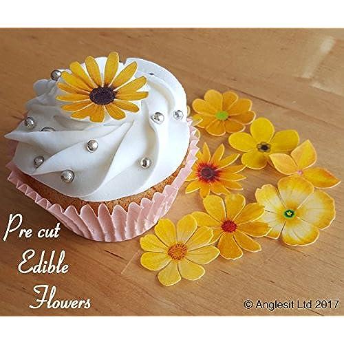 Edible Flower Cake Decorations Amazoncouk