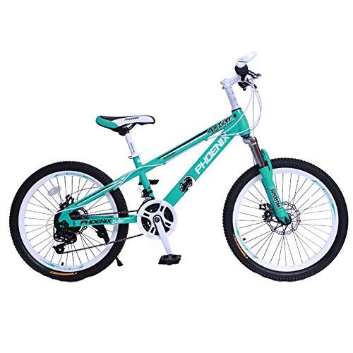 Wangkai Mountainbike Kohlenstoffhaltiger Stahl Dämpfung im Gelände Doppelscheibenbremsen Vorn und Hinten,Green (20 Roulette-rad)