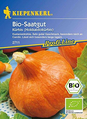Kürbissamen - Kürbis, Hokkaido, Solor ( Bio - Saatgut ) von Kiepenkerl