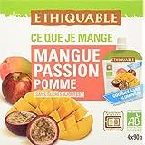 Ethiquable Gourde Mangue Passion Pomme Bio 90 g - Lot de 4