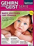 Babys verstehen und fördern: Psychologisches Wissen zu Schwangerschaft und Säuglingszeit (Gehirn&Geist Serie)