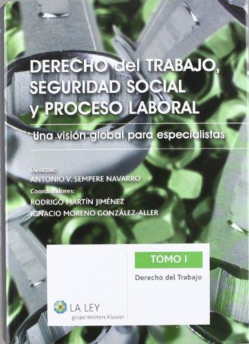 Derecho del trabajo, Seguridad Social y proceso laboral: Una visión global para especialistas: 2