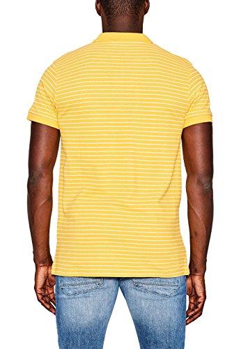 ESPRIT Herren Poloshirt Gelb (Yellow 750)