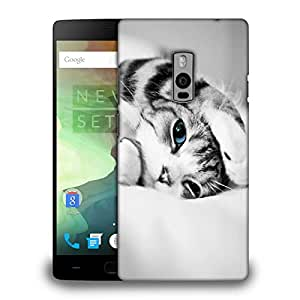 Snoogg kitten cat Designer Protective Back Case Cover For OnePlus Two