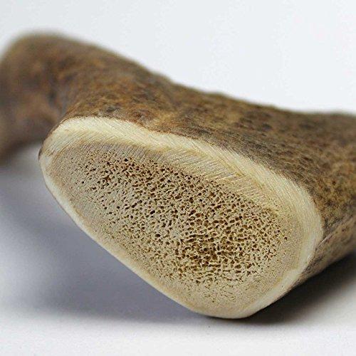 Hundesnack Geweih Full Chew Größe III: ca. 15 cm / 80 – 120 g - 6