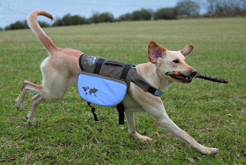 Trixie 28831 Rucksack für Hunde On the Trek, M - L, 27 x 16 cm, braun/blau