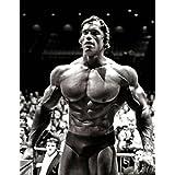 "Arnold Schwarzenegger Póster de tela 32""x24""/17""x13"", 32""x24"""