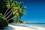 Empire 524003 Strände Beaches - New Morning - Palmen Meer Paradies - Druck - Maxi-Poster - Grösse 91.5 x 61 cm