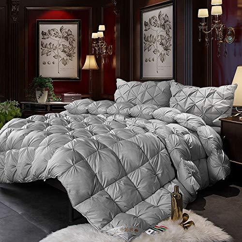 QUILT Ente/Gänsedaunen Brot Bettdecke Luxus Winter Warme Decke Tröster 2,5~4 Kg Füllstoff Twin Queen King Size,Silver-220 * 240cm(4kg) -
