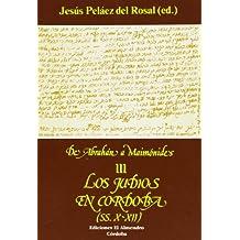 Los judíos en Córdoba: Siglos X-XII (Estudios de Cultura Hebrea)