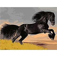JAGENIE Pittura a olio regalo fai da te con i numeri Cavallo nero disegno su tela Home Office Decor 40x50cm
