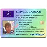 Coolrideplates® Kid's Personalised Driving Licence *SIMPLY MESSAGE US WITH THE NAME AND PHOTO REQUIRED AFTER ORDERING*