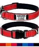 Joytale Collare Personalizzato Cane Riflettente, Collare Nylon per Cani Incisione con Nome Targhetta, per Cani di Piccola, Media, Grossa Taglia,Rosso