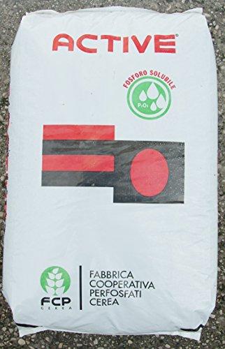 concime-potassico-active-focus-12-28-in-sacco-da-25-kg