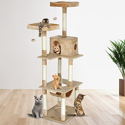 Cat Climbing Towers