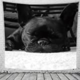 Bulldogge Wandteppiche Mops Tapestry Psychedelisch Tapisserie Wandtuch Hippie Wall Hanging,Wanddeko Indisch Wandbehang Strandtuch,Tagesdecke,Tuch,Picnic Throw Muster1 150cmX200cm