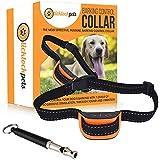 Stop Dogs Barking. Anti Bark, Dog Training Collar. Prevents Barking With Smart Training Dog Collar. FREE Dog Whistle & FREE eBook: Dog Training for