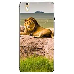 Make My Print Lion Printed Colorful Hard Back Cover For InFocus M810