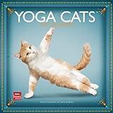 Yoga Cats 2013 - Joga-Katzen - Original BrownTrout-Kalender