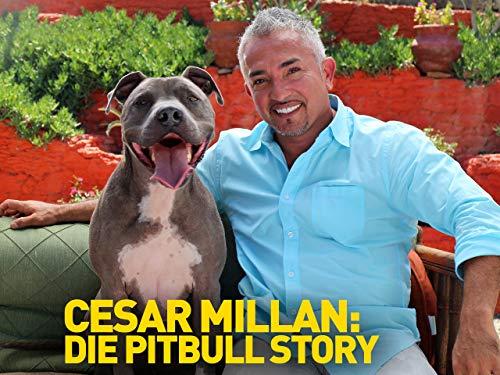 Cesar Millan: Die Pit Bull Story [dt./OV] - Englisch-leinen