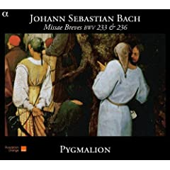 Missa Brevis in F Major, BWV 233: IV. Qui tollis