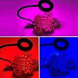 Lorenlli 36W 3 Heads Flexible 360 Grad Clip Design LED Pflanzenwachstum Licht Pflanze Blume Gemüse Indoor Gewächshaus Hydroponics Licht