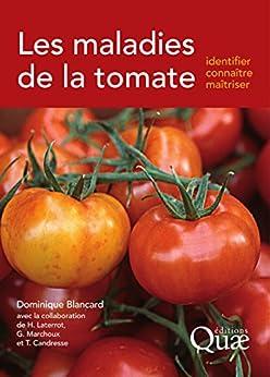 Les maladies de la tomate: Identifier, connaître, maîtriser par [Blancard, Dominique]