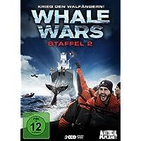 Whale Wars - Krieg den Walfängern! Staffel 2 [3 DVDs]