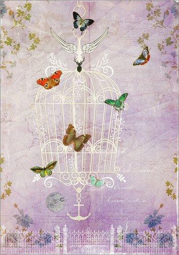 Posterlounge Alu Dibond 90 x 130 cm: der Käfig II Freiheit von Sybille Sterk