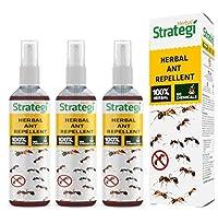 Herbal Strategi Ant Repellent (3)