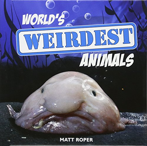 World's Weirdest Animals Cover Image