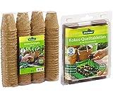 Dehner Anzuchttöpfe für Pflanzen, Ø je 6 cm, 96 Stück, Zellulose & Kokos-Quelltabletten mit Nährstoff-Mix, zur Anzucht von Stecklingen, Sämlingen und Saaten, Ø 38 mm, 50 Stück