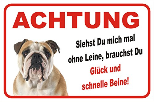 Schild - Vorsicht Englische Bulldogge
