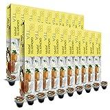 SanSiro Grüner Tee Jasmin - 200 Nespresso® kompatible Teekapseln - 20er Pack (20 x 10 Teekapseln)