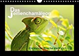 Das Jemenchamäleon (Wandkalender 2018 DIN A4 quer): Ein kleiner Drache stellt sich vor (Monatskalender, 14 Seiten ) (CALVENDO Tiere) [Kalender] [Apr 01, 2017] Düll, Sigrun