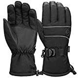 Terra Hiker Waterproof Ski Gloves, Thermal Thinsulate Gloves for Skiing, Snowboarding, Cycling and Other Winter Sport Activities (Men, Women)