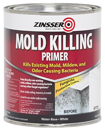 rust-oleum-276087-mold-killing-primer-quart