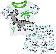 SAMGU Pijama para Niños Algodón Dos Piezas Dinosaurio Ropa Pantalón y Camiseta de Manga Larga para Dormir Conj