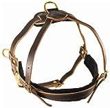 Dean & Tyler Hundegeschirr, Leder, Cowboy-Design, XL, braun