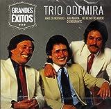 Trio Odemira - Grandes Exitos [CD] 2016