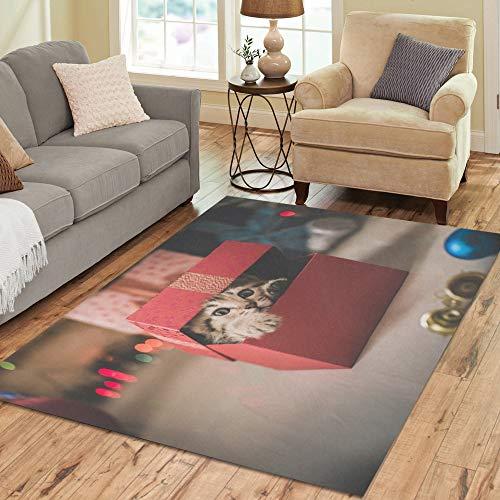 Enhusk Nette Katze Tier mit Box große benutzerdefinierte Rutschfeste Moderne bodenfläche Teppich pad Matte Oriental kommerziellen Carpet für Keller Schlafzimmer Wohnzimmer wohnkultur 5'x7 'Indoor